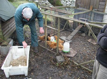 Hatched by Raasay primary!