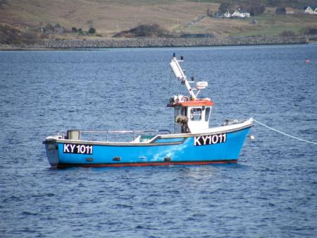 Amphitrite KY1011