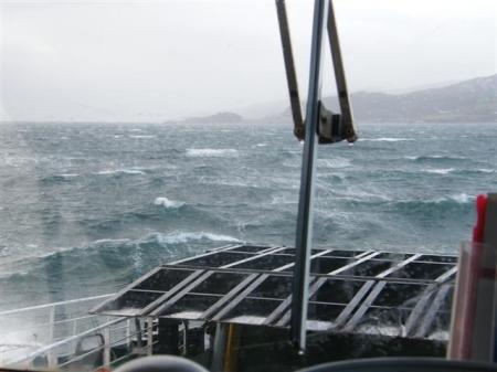 North wind 1