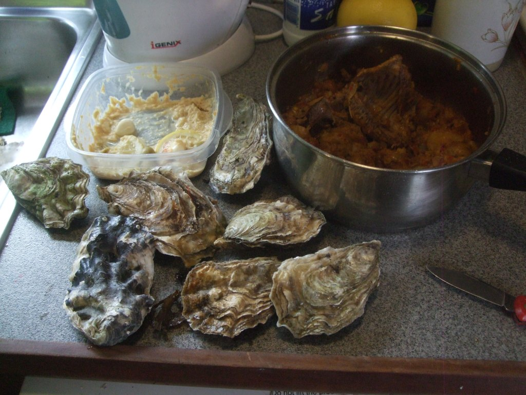 Hot rabbit, cool oysters and home made humous :-)