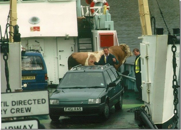 deartment bull 1993