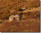 Donald's barn