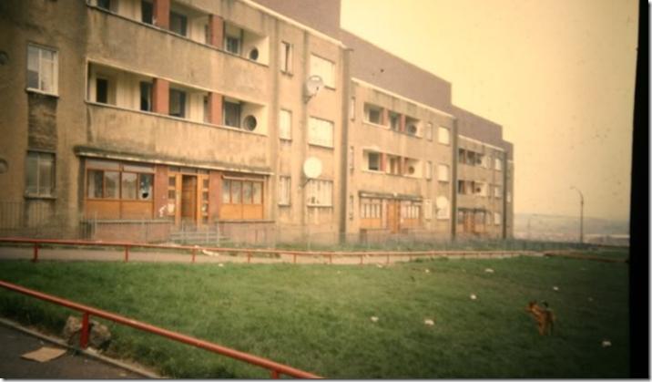 darnley flats