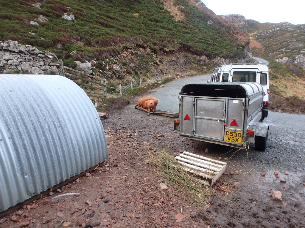 Applecross broadband | Life at the end of the road